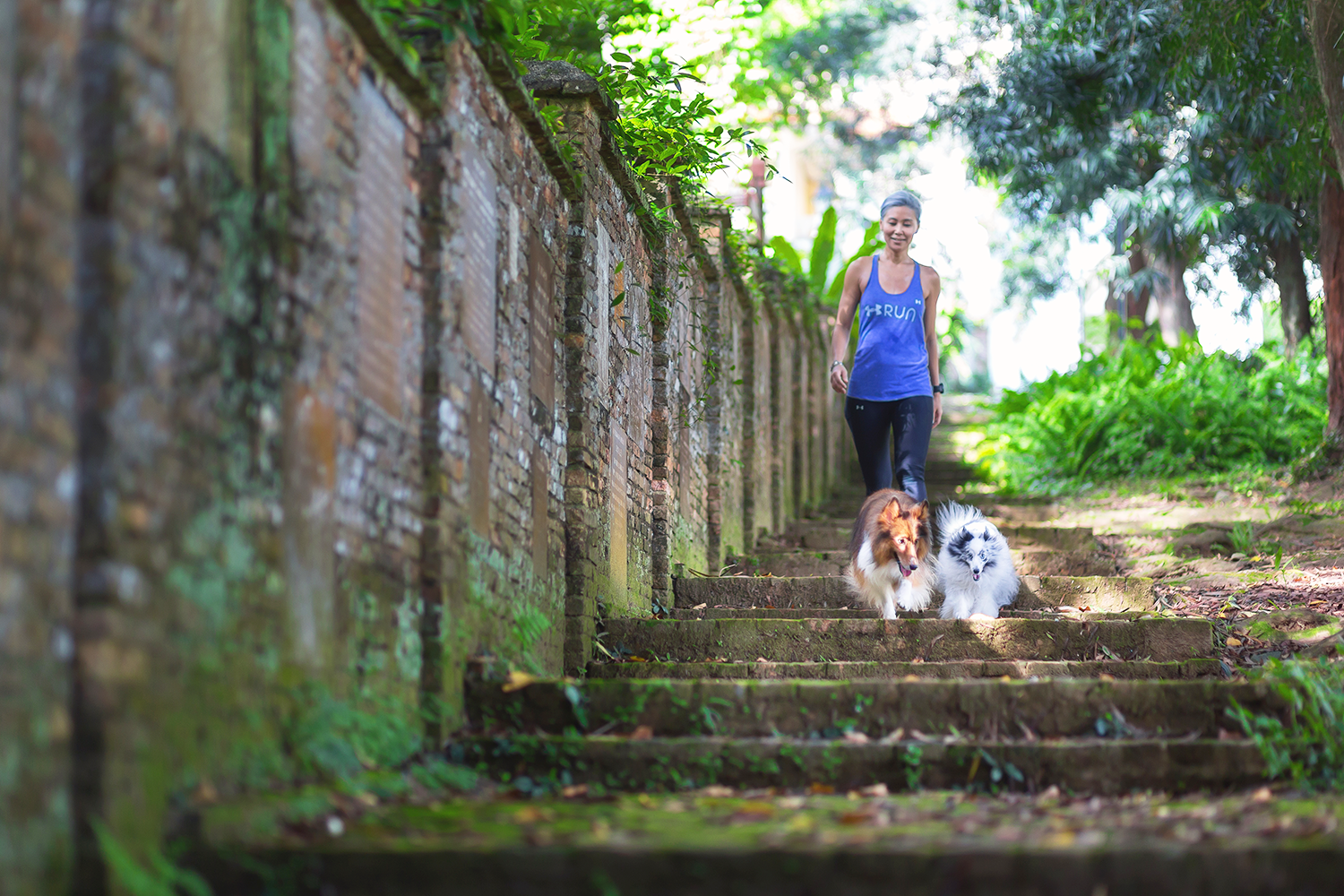ashlogue_ashleeyleong_mariechoo_sosd_dogs_singapore fort canning_fort canning_marie choo the straits times_marie choo channel news asia_fort canning arts centre